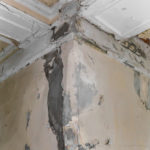 Mold Damage Restoration Services in San Diego that cure and prevent Mold for long periods of time